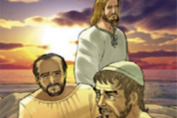 23.02.2014 – 7^ Domenica del Tempo Ordinario: Siate perfetti come il Padre vostro celeste Mt(5,48)