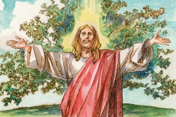 14.06.2015 – 11^ Tempo Ordinario: Come un uomo che getta il  seme sul terreno (Mc 4,26)