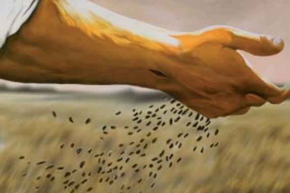 14.06.2015 – 11^ Tempo Ordinario: Nulla è piccolo di ciò che si fa per Amore!