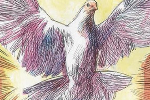 15.05.2016 – Pentecoste: Lo Spirito Santo vi insegnerà ogni cosa (Gv 14,26)