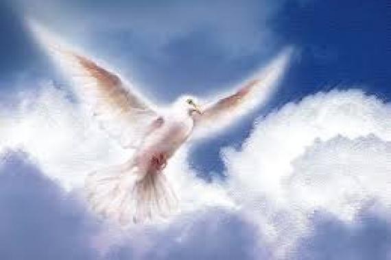 15.05.2016 – Pentecoste: La missione dello Spirito Santo nella Chiesa