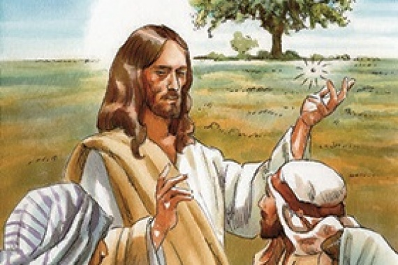 17.06.2018 – 11 ^ Tempo Ordinario: Il regno di Dio è come un granello di senape (Mc 4,31)