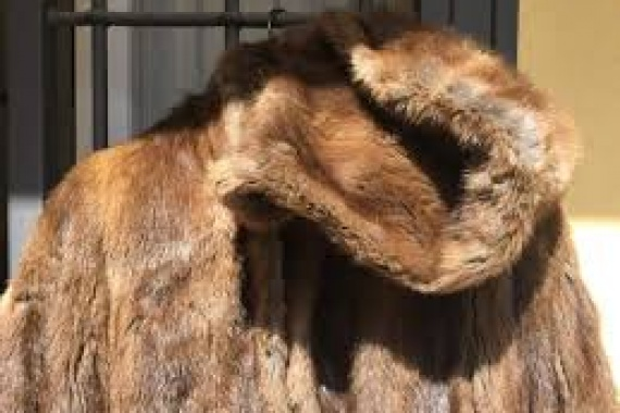 La pelliccia