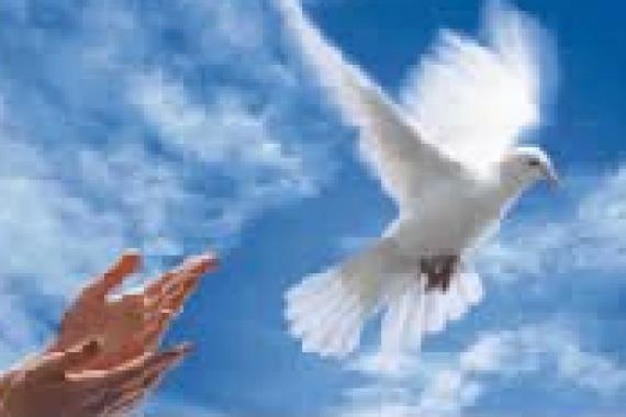 27 Marzo – Al volo … ANGELUS DI PAPA FRANCESCO